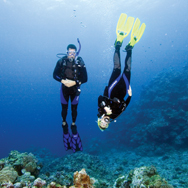 Be at ease in the water with PADI?s Peak Performance Buoyancy Course